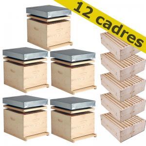 Vends pack de 5 ruches DADANT complètes