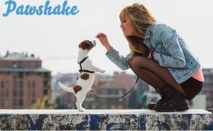 Trouvez un Pet Sitter de confiance