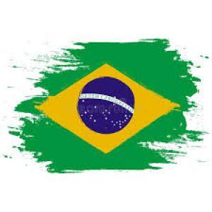 Portugais-brésilien – cours privés