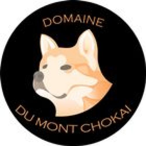 Chiots Shar Pei (LOF) du Domaine du Mont Chokaï