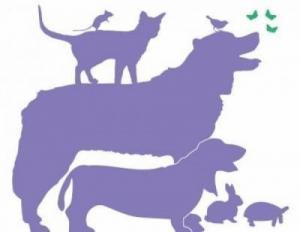 Dogsitting et catsitting