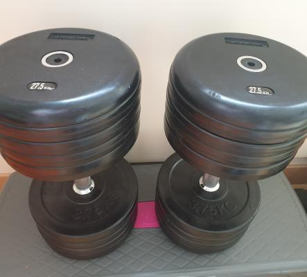 2 Dumbbells 27.5 kg Tactical Steel