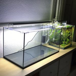 Vend Aquarium complet 54Litres (60x30x30cm)