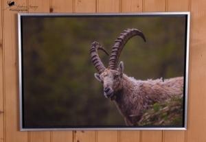 Impression sur toile 60 x 90 cm