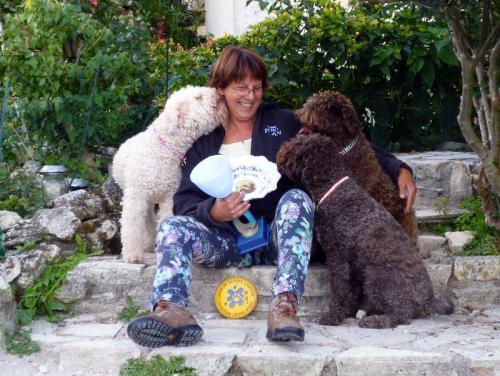Chiots Lagotto sensibilisé à la truffe