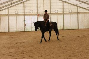 Cours d'équitation/voltige adulte