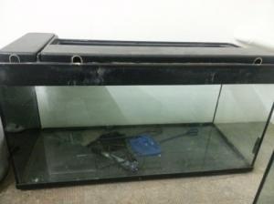 aquarium sans meuble 200L