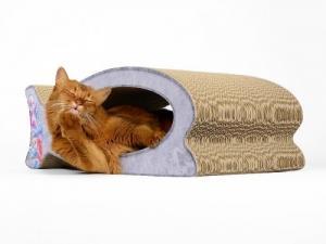 Minois.ch - online shop pour chats