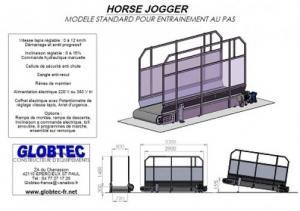 Tapis marcheur pour chevaux et poneys