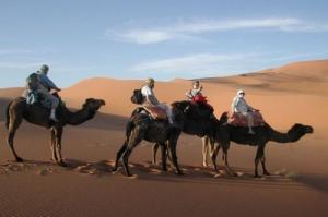 Trekking,Circuit et Séjours au Maroc