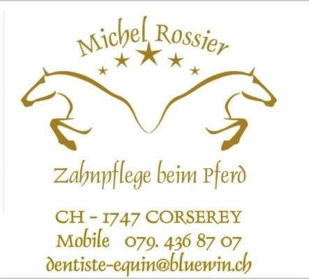 Zahnpflege für pferde - Der équi Zahnarzt
