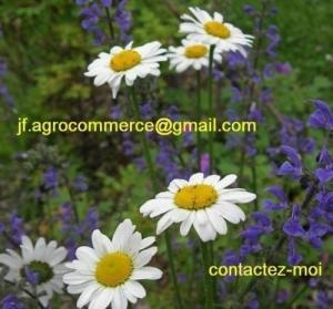 Aide pour votre jardin