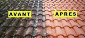 Traitement de toiture contre la mousse