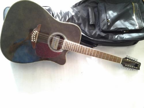 guitare strings électo acoustique12 cordes en acier