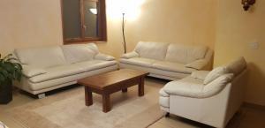 Salon en cuir - deux canapés 3 places + un fauteuil
