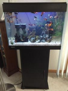Meuble avec aquarium et poissons
