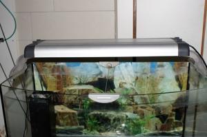 aquarium complet ferlplast 150L