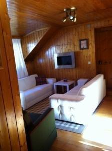 Appartement de vacances Rossinière
