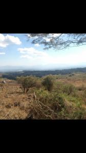 Terrain de 20'700 m2 au-dessus de Colima au Mexique