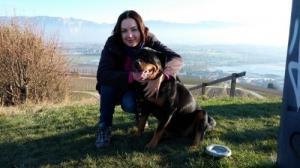 Garde et promenades de chiens