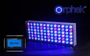 Lampe LED eau de mer