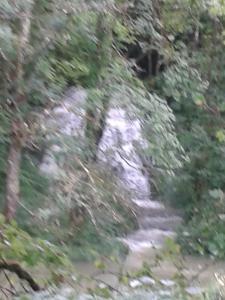 Goumois bord du Doubs
