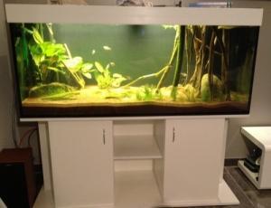 Aquarium 540 lt