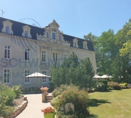 Château composé de chambres d'hôtes, restaurant, salle séminaire