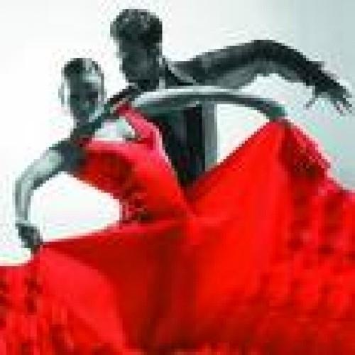 Cours spécifique mariage  Montreux 2019