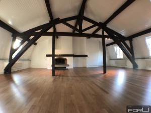 Superbe attique atypique dans le Vieux-Carouge