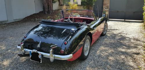 Vends Austin Healey 3000 bj8 1965