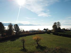 Superbe maison de campagne rénovée, grand terrain, calme, vue  sur lac