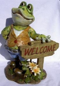 Grenouille de jardin - Welcome