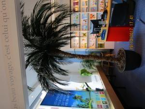 1 ou 2 palmiers naturalisés