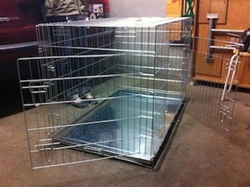 cage pour chien pliable. Black Bedroom Furniture Sets. Home Design Ideas