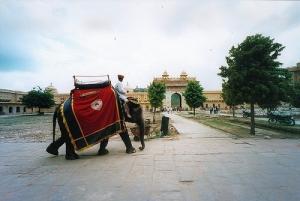 Séjour en Inde  Jodhpur Voyage