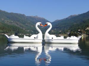 Bateaux Kayaks Pédalos